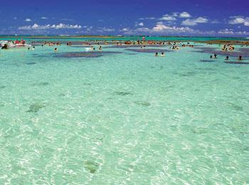 Natureza em sua Forma mais Exuberante: Alagoas, o Paraíso das Águas