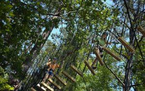 """""""Arborismo"""" Arcobatics on a Natural Circus"""