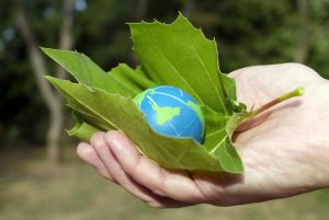 Tax Relief for Homeowners, Social Responsibility & Eco-Friendly Folks