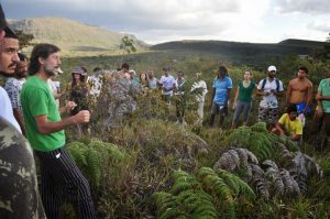 Permaculture in the Brazilian Drylands