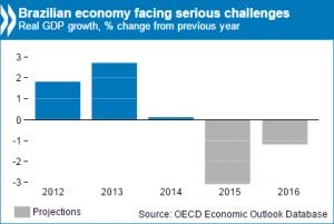 Brazil's Economy: a Critical Moment