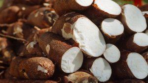 "Brazil: Land of Sweet Cassava and ""Farofa"""